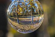 Huntsville State Park, Huntsville, Texas, Autumn