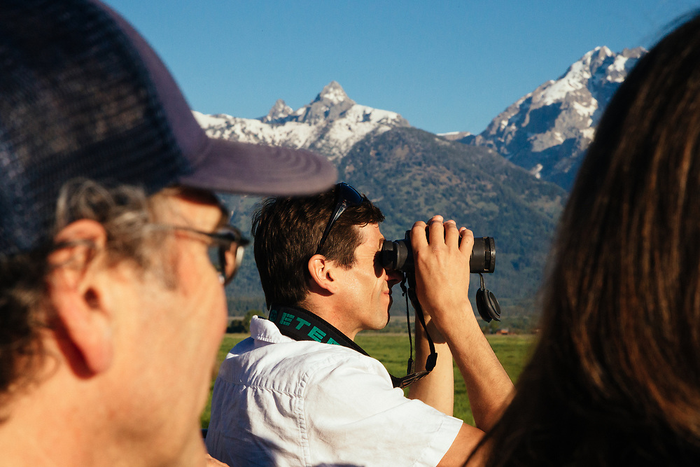 A Teton Science Schools wildlife tour looks for a dening family of coyotes in Grand Teton National Park, Wyoming. (Paul Maddex and Sean Baker)