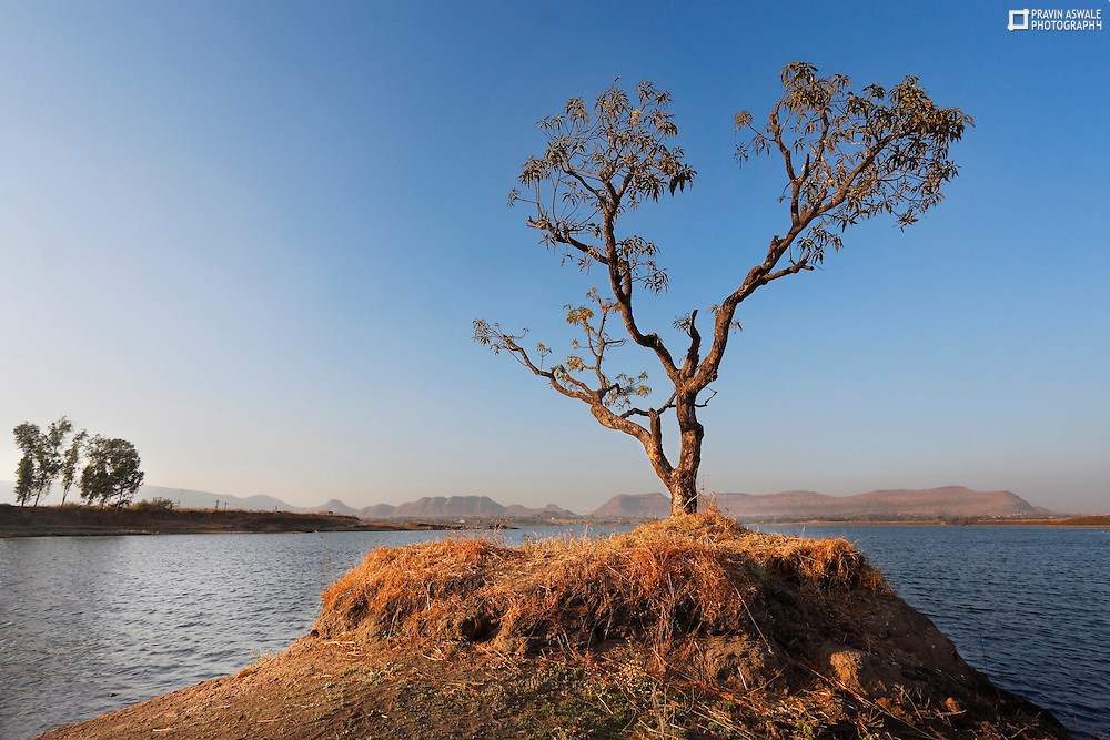 Alone Tree at valdevi lake,