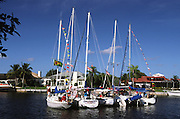 5 sailboats rafted together for party; Christmas; celebration; recreation; Punta Gorda; FL; Florida