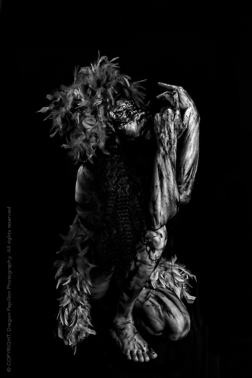 © Copyright.  Dragon Papillon Photography. 2013. All rights reserved.