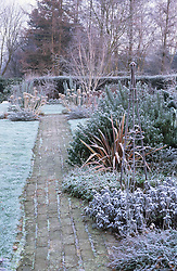 The garden at Ketley's in winter. Metal obelisk, phormium, agapanthus seedheads and silver birch providing structure.