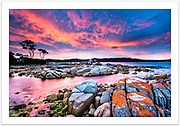 A brilliant display of sunset colour at Binalong Bay [Bay of Fires, Tasmania, Australia]<br />Read more about this image on the Blog: http://girtbyseaphotography.com/bay-of-fires-sunset-binalong-bay/<br /><br />Image ID: 201664. Order by email to orders@girtbyseaphotography.com quoting the image ID, preferred print size & media. Current standard size prices are published on the Pricing page. Custom sizes also available.