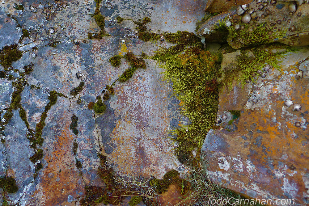mcrae creek rock pattern