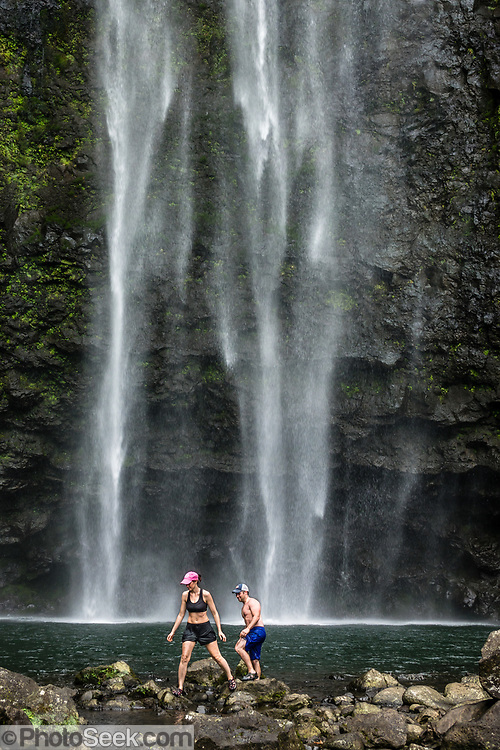 Beautiful Hanakapiai Falls (300 feet high) is a slippery side trip from Kalalau Trail, on Na Pali Coast, Kauai, Hawaii, USA. A stunning day hike along the Kalalau Trail goes from Ke'e Beach to Hanakapiai Beach, with a rougher side trip to impressive Hanakapiai Falls, in Na Pali Coast State Wilderness Park on the island of Kauai. To reach Hanakapiai Valley's waterfall, follow the signed clay trails for a moderately strenuous 8.8 miles round trip with 2200 feet cumulative gain (measured on my GPS). Bring plenty of fresh water. I recommend boots with sturdy tread, hiking poles, plus water shoes for the several stream crossings. Arrive early to get parking at the trailhead in Haena State Park at the end of the Kuhio Highway (Hawaii Route 560). The gorgeous Kalalau Trail was built in the late 1800s to connect Hawaiians living in the remote valleys. No permit is needed for day hiking to Hanakapiai Falls. But hikers going onwards from Hanakapiai Beach to Hanakoa and Kalalau Valleys require a camping permit from the Hawaii Department of Land and Natural Resources (HDLNR).