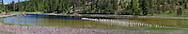 Bubna Slough along Glenmore Road in Kelowna, British Columbia, Canada.
