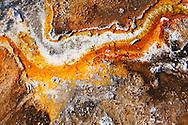 Detalle de bacteria termofílica en aguas termales, Yellowstone NP, Wyoming (Estados Unidos)