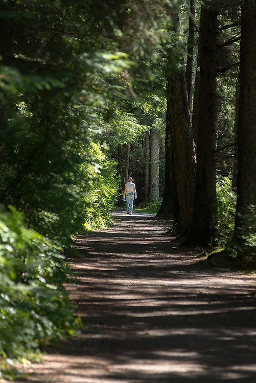 Walking at trail in Totem Park, Sitka, Alaska.