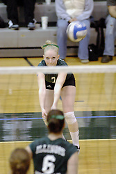 27 October 2006: Sarah Vegter keeps her eye on the incoming ball as she prepares to set it to the front. The Bears won the match 3 games to 1. The match between the Washington University Bears and the Illinois Wesleyan Titans took place at Shirk Center on the IWU campus in Bloomington Illinois.<br />