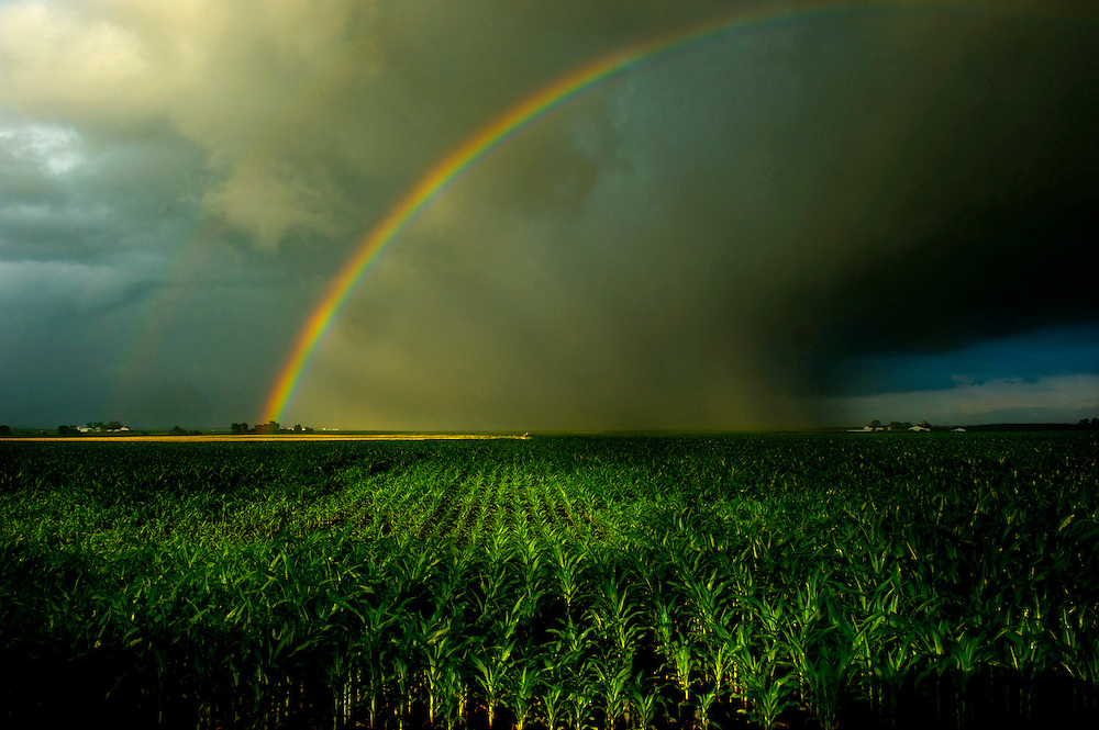 A rainbow follows a storm passing through Tazewell County, Illinois.©David Zalaznik