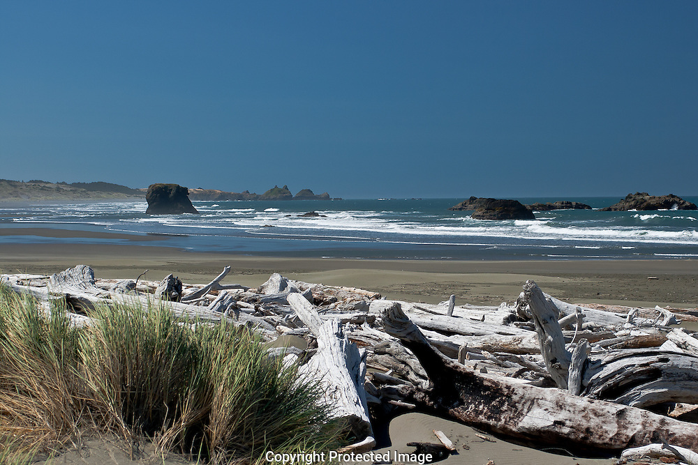 Driftwood along the sandy beaches of Oregon's Pacific coast are in continuous flux as waters of the Pacific oceans tides flow