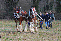Limavady, Co Derry, brothers, Raymond (ploughing) and Victor Scott (with the reins), with their pair of Clydesdales, taking part in the very popular horse ploughing class. Taken 28 February 2009 at 95th annual ploughing match of Mullahead & District Ploughing Society, Co Down, N Ireland, UK, 200902281867.<br />