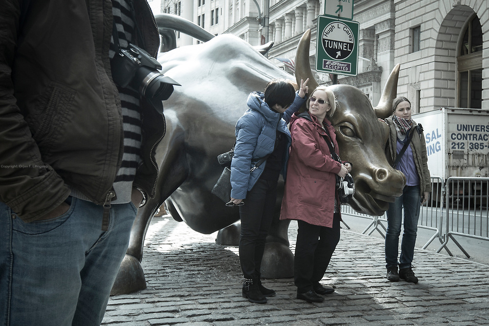 Charging Bull, which is sometimes referred to as the Wall Street Bull or the Bowling Green Bull, is a bronze sculpture that stands in Bowling Green in the Financial District in Manhattan, New York City.