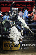 Derek Kolbaba rides Smooth Over during the Professional Bull Riders, Built Ford Tough Series at the Sprint Center, Saturday, Feb. 11, 2017, in Kansas City, Mo. (AP Photo/Colin E. Braley)
