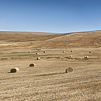 Panorama of a vast western hayfield.