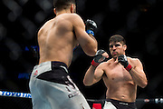 Vincente Luque fights against Belal Muhammad during UFC 205 at Madison Square Garden in New York, New York on November 12, 2016.  (Cooper Neill for The Players Tribune)