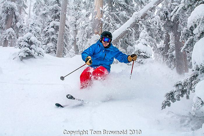 An expert powder skier enjoying a fresh line on newly fallen snow on a cold morning in Arizona