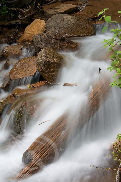 Gentle falls over an old log in Cheyenne Canyon. Colorado Springs, Colorado