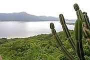 Florianopolis_SC, Brasil.<br /> <br /> Lagoa da Conceicao em Florianopolis, Santa Catarina.<br /> <br /> Conceicao lake in Florianopolis, Santa Catarina.<br /> <br /> Foto: JOAO MARCOS ROSA / NITRO