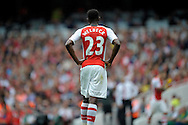 Arsenal's Danny Welbeck looks on. . Barclays Premier league match, Arsenal v Manchester city at the Emirates Stadium in London on Saturday 13th Sept 2014.<br /> pic by John Patrick Fletcher, Andrew Orchard sports photography.