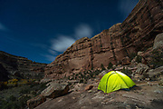 Camping in Bullet Canyon, Cedar Mesa, Grand Gulch Primitive Area and Bears Ears National Monument.