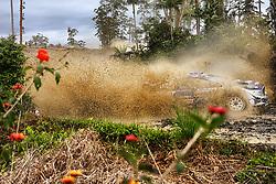 November 17, 2017 - AUSTRALIE - tanak. (Credit Image: © Panoramic via ZUMA Press)