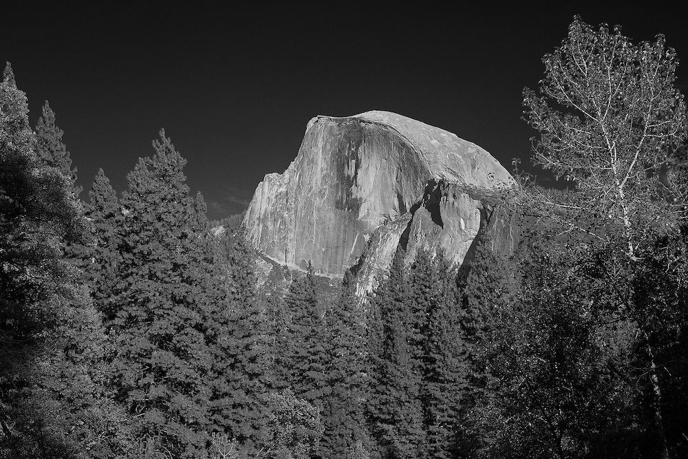 Half Dome And Pines - Merced River Bridge View - Yosemite - Infrared Black & White