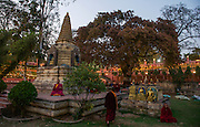 Mahabodhi Temple, home of the Banyan Tree under which the Lord Budha received enlightenment, Bodh Gaya, Bihar, India