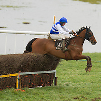 Action from the East Clare Harriers 2015 Killaloe point to point from the East Clare Harriers 2015 Killaloe point to point from the East Clare Harriers 2015 Killaloe point to point from the East Clare Harriers 2015 Killaloe point to point from the East Clare Harriers 2015 Killaloe point to point from the East Clare Harriers 2015 Killaloe point to point from the East Clare Harriers 2015 Killaloe point to point