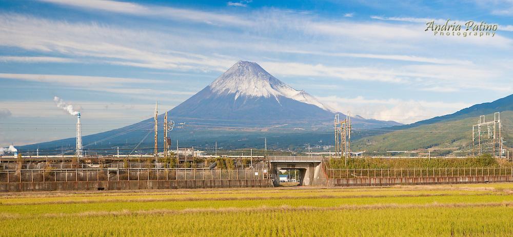 Panorama view of Mt. Fuji from rice field, Honshu, Japan