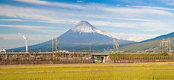 Panorama view of Mt. Fuji from rice field, Honshu, Japan