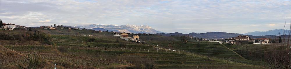 Novembre 2010..Agriturismo AL Confine di Sabina Russian..Localita' Plessiva, Cormons, Gorizia, FVG..Foto di Simone Ferraro