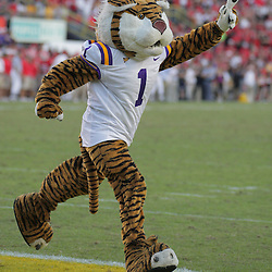25 October 2008:  LSU Tiger mascot Mike the Tiger during the Georgia Bulldogs 52-38 victory over the LSU Tigers at Tiger Stadium in Baton Rouge, LA.