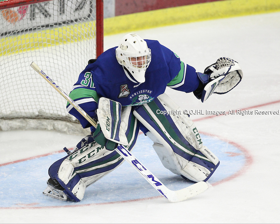 COBOURG, ON  - FEB 6,  2017: Ontario Junior Hockey League game between the Burlington Cougars and the Cobourg Cougars. Mario Cavaliere #31 of the Burlington Cougars follows the play during the second period.<br /> (Photo by Tim Bates / OJHL Images)