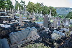 "© Licensed to London News Pictures . 28/06/2018 . Saddleworth , UK . Scorched earth in Saddleworth Graveyard where fire burned through dry grass in the late hours of Wednesday 27th June (yesterday) and had to be extinguished by firefighters . The army are being called in to support fire-fighters , who continue to work to contain large wildfires spreading across Saddleworth Moor and affecting people across Manchester and surrounding towns . Very high temperatures , winds and dry peat are hampering efforts to contain the fire , described as "" unprecedented "" by police and reported to be the largest in living memory . Photo credit: Joel Goodman/LNP"