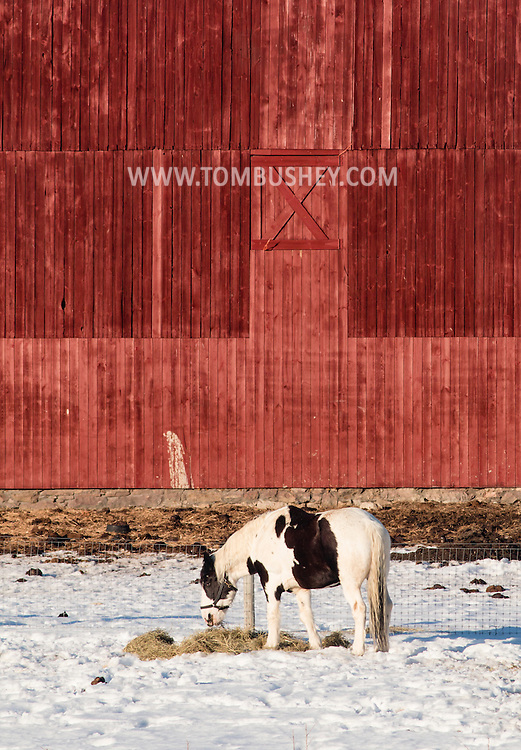 Goshen, New York - Farm scenes on a winter afternoon on March 12, 2015.
