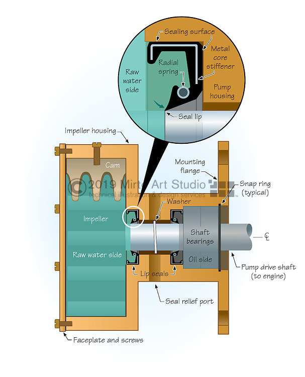 A vector illustration showing the use of a Lip Seal in a marine raw water pump, and in a marine transmission coupling. Lip Seals are common seals in engines and pumps.