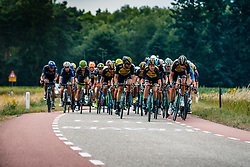 Peloton with Team LottoNL-Jumbo during 2017 National Road Race Championships Netherlands for Men Elite, Montferland, The Netherlands, 25 June 2017. Photo by Pim Nijland / PelotonPhotos.com | All photos usage must carry mandatory copyright credit (Peloton Photos | Pim Nijland)