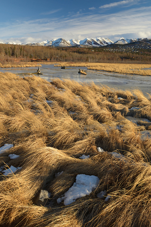 Potter marsh in winter outside of Anchorage,Alaska,USA