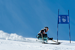 VICTOR Stephani, USA, Super G, 2013 IPC Alpine Skiing World Championships, La Molina, Spain