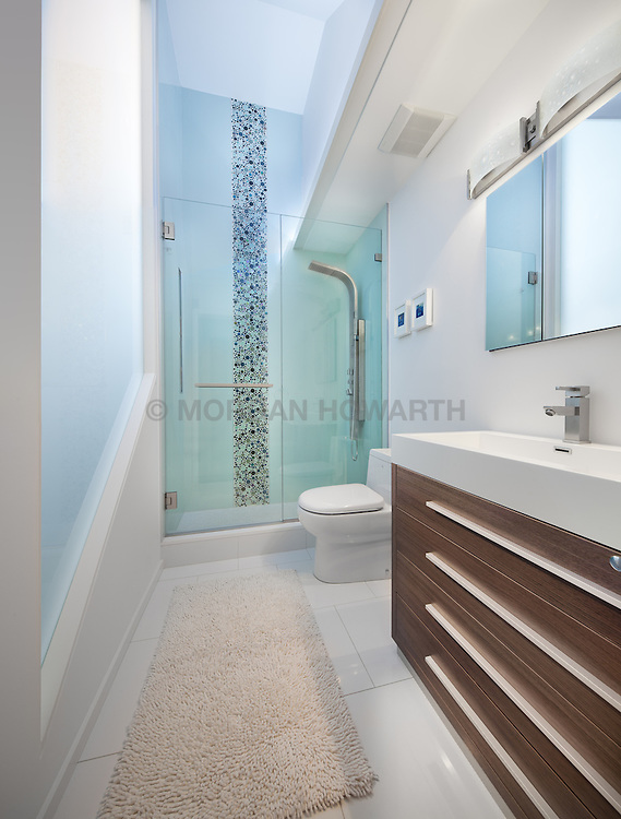 3222 Cherry Hill Lane Washington Dc Design build Anthony Wilder Master Bathroom