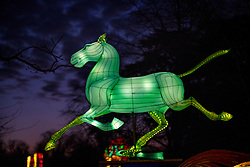 © Licensed to London News Pictures. 18/01/2017. London, UK. A horse shaped lantern on display at he Chiswick House Magic Lantern Festival. The Festival is a fusion of art, heritage and culture. Illuminating outdoor installations of beautifully sculpted lanterns taking various forms. Opening tomorrow and running until February 26th 2017 the theme for this year's festival is: 'Explore The Silk Road'. Visitors will discover life-sized and oversized lantern scenes, which represent and highlight this significant route of trade and culture from Europe to Ancient China.Photo credit: Peter Macdiarmid/LNP