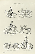 Various forms of early bicycle including  the Drasien,  Gompertz's Velocipede, a Dandy Horse and a  and Boneshaker. From 'The National Encyclopaedia', London, 1880.