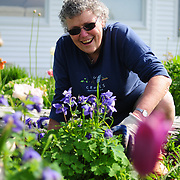 Harpswell, Maine - May 20, 2013 - Linda Blanton is a volunteer, veteran and incredible person. She's a master Gardener and swimming teacher to generations of children in Maine.  Photo © 2013 by Roger S. Duncan.  .