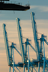 Cranes at Port of Tacoma, Tacoma, Washington, United States