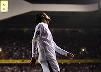 Photo: Paul Thomas.<br /> Tottenham Hotspur v Sevilla. UEFA Cup. Quarter Final, 2nd Leg. 12/04/2007.<br /> <br /> Dejected Spur Dimitar Berbatov.