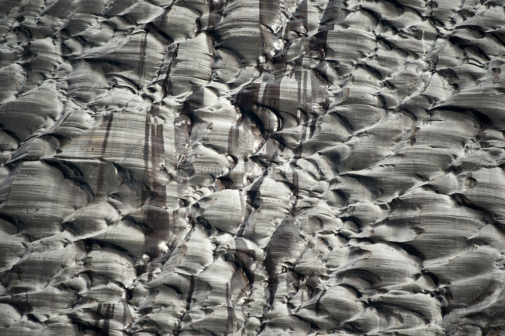 Glacially carved rock near the Dawes Glacier, Endicott Arm, Alaska.