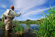 Fly Fishing, Lifestyle, MR, Silver Creek, Summer, lane, x games* model releasesed