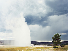 Yellowstone-National-Park-Stock-Pictures-Photos