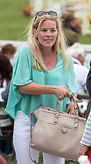 AUG 01 2014 Festival of British Eventing